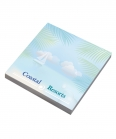 3505Bic Recycled Adhesive notepads 25 fogli (75x75mm)