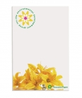 3550Bic Recycled Adhesive notepads 50 fogli (50x75mm)